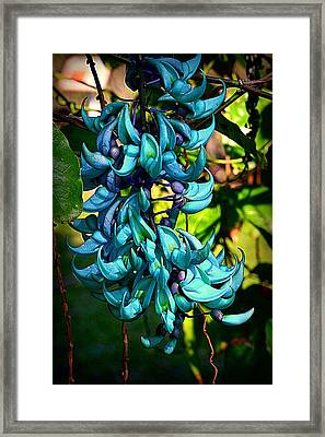 Tropical Jade Framed Print by Lori Seaman