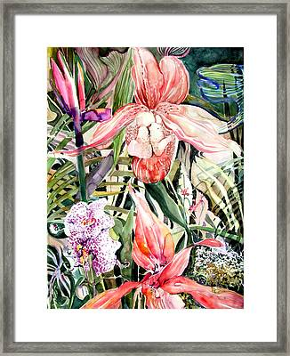 Tropical Orchids Framed Print by Mindy Newman