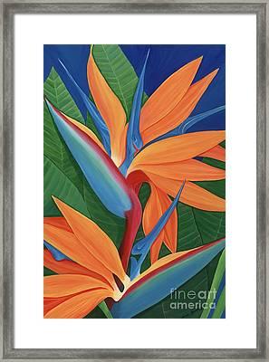 Tropical Paradise Framed Print by Lisa Bentley
