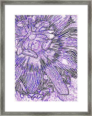Tropical Passion Framed Print by James Temple