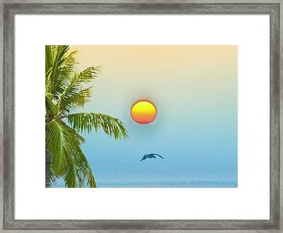 Tropical Sun Framed Print by Bill Cannon