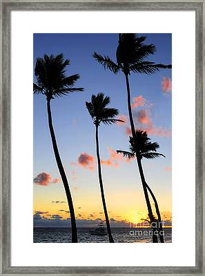 Tropical Sunrise Framed Print by Elena Elisseeva