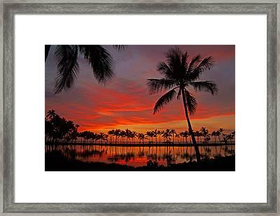 Tropical Sunset Reflections Framed Print by Jennifer Crites