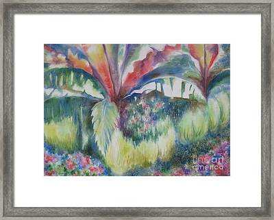 Tropicana Framed Print by Deborah Ronglien