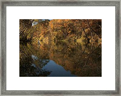 Trout Season At Bennett Spring Framed Print by Mitch Spence
