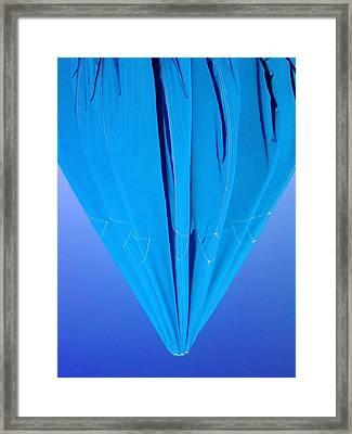 True Blue Framed Print by Anna Villarreal Garbis