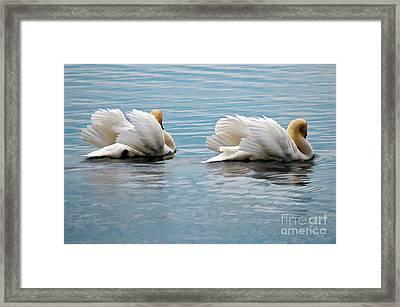 True Love Framed Print by Lois Bryan