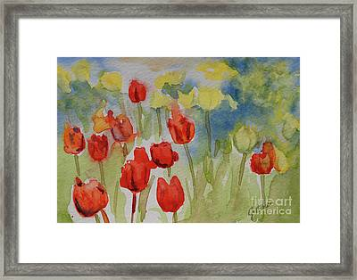 Tulip Field Framed Print by Gretchen Bjornson