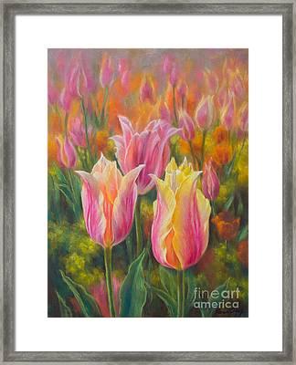 Tulipomania 6 Blushing Beauties Framed Print by Fiona Craig