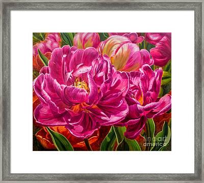 Tulipomania 8 Magenta Triumph Framed Print by Fiona Craig