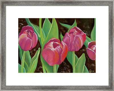 Tulips Framed Print by Candice Wright