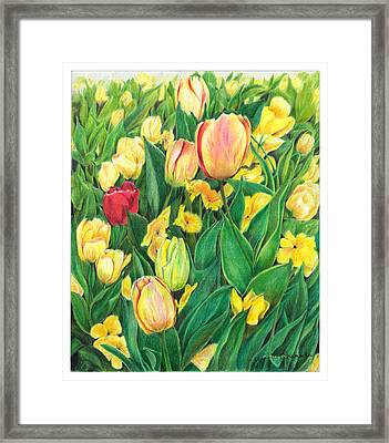 Tulips From Amsterdam Framed Print by Jeanette Schumacher