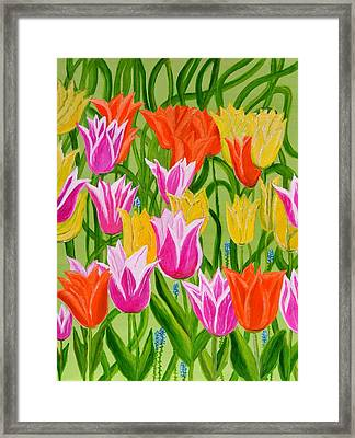 Tulips Framed Print by Magdalena Frohnsdorff