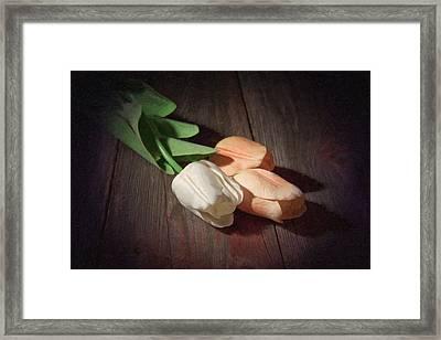 Tulips Framed Print by Tom Mc Nemar