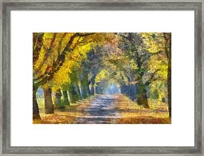 Tunnel Framed Print by Judy Coggin