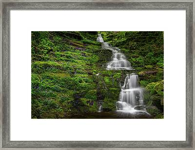 Tunxis Forest Waterfall Framed Print by Bill Wakeley