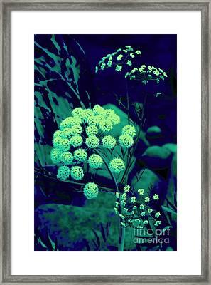 Turguoise Surreal Plant Framed Print by Tuija Karhinen