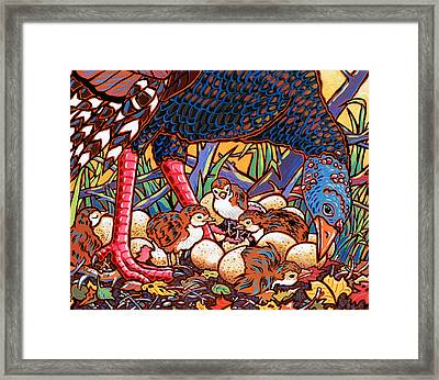 Turkeys Framed Print by Nadi Spencer