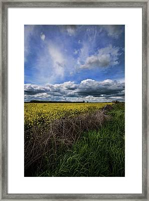 Turnip Field II  Framed Print by Bonnie Bruno