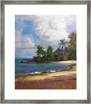 Turtle Beach Framed Print by Richard Robinson