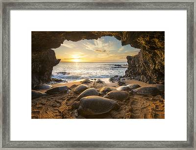 Turtle Cave Framed Print by Hawaii Fine Art Photography