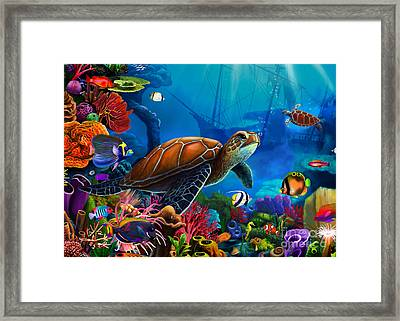 Turtle Domain Framed Print by Gerald Newton