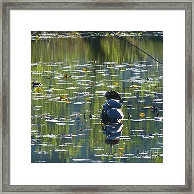 Turtles All The Way Down Digital Paint Framed Print by As the Dinosaur Flies Photography