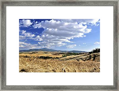 Tuscan Landscape With Cornfield Framed Print by Juergen Feuerer