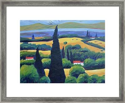 Tuscan Pines And South Bay Framed Print by Gary Coleman