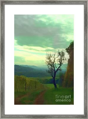 Tuscany Vineyard  Framed Print by Tom Prendergast