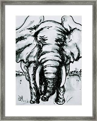 Tusk Tusk II Framed Print by Pete Maier
