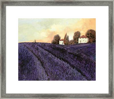 Tutta Lavanda Framed Print by Guido Borelli