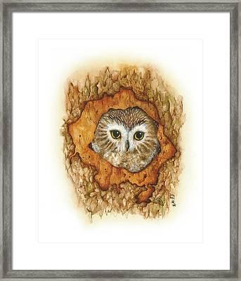 Twilight Owl Framed Print by Donna Genovese