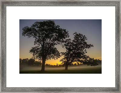Twilight Twin Oaks Framed Print by Chris Bordeleau