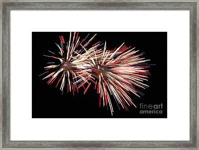 Twin Burst Framed Print by Norman  Andrus