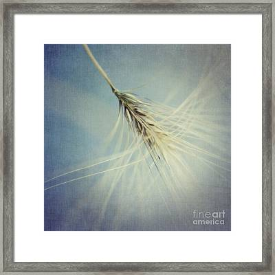 Twirling Framed Print by Priska Wettstein