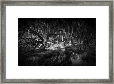 Twisted Oak Framed Print by Marvin Spates
