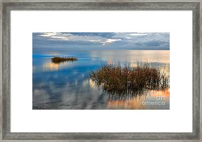 Two Alone In Pamlico Sound I Framed Print by Dan Carmichael