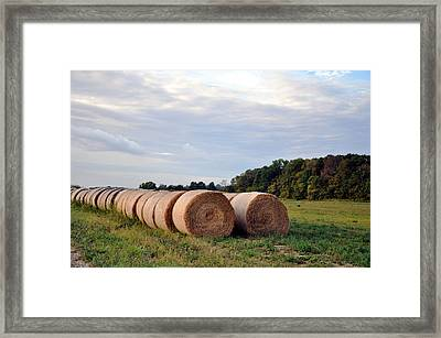 Two By Two Framed Print by Brittany H