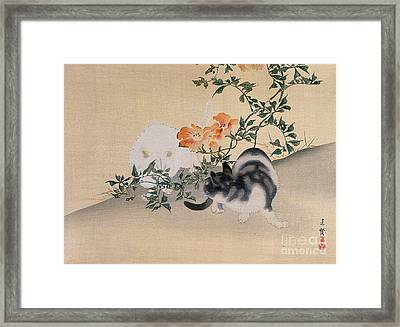 Two Cats Framed Print by Japanese School