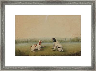 Two Dogs In A Landscape Framed Print by MotionAge Designs
