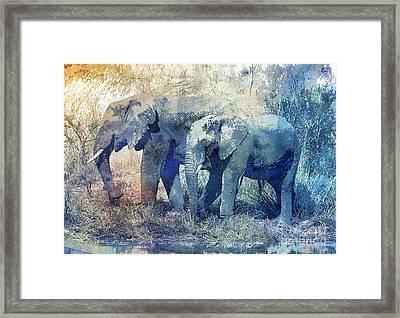 Two Elephants Framed Print by Jutta Maria Pusl