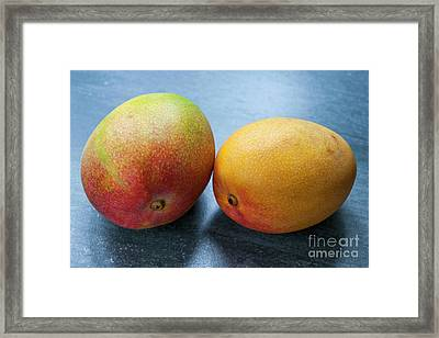 Two Mangos Framed Print by Elena Elisseeva