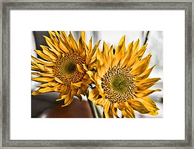 Two Of A Kind Framed Print by Sharon Popek