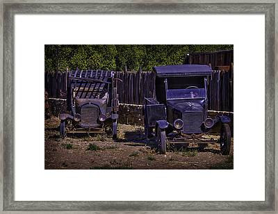 Two Old Friends Framed Print by Garry Gay