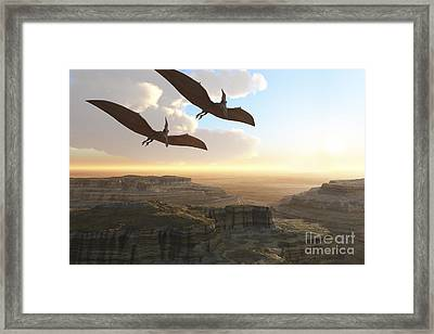 Two Pterodactyl Flying Dinosaurs Soar Framed Print by Corey Ford