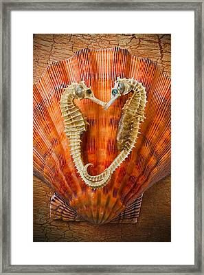 Two Seahorses On Seashell Framed Print by Garry Gay