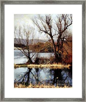 Two Souls Reflect Framed Print by Janine Riley