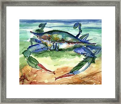Tybee Blue Crab Framed Print by Doris Blessington