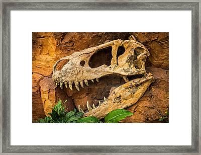 Jurassica Framed Print by Wim Lanclus